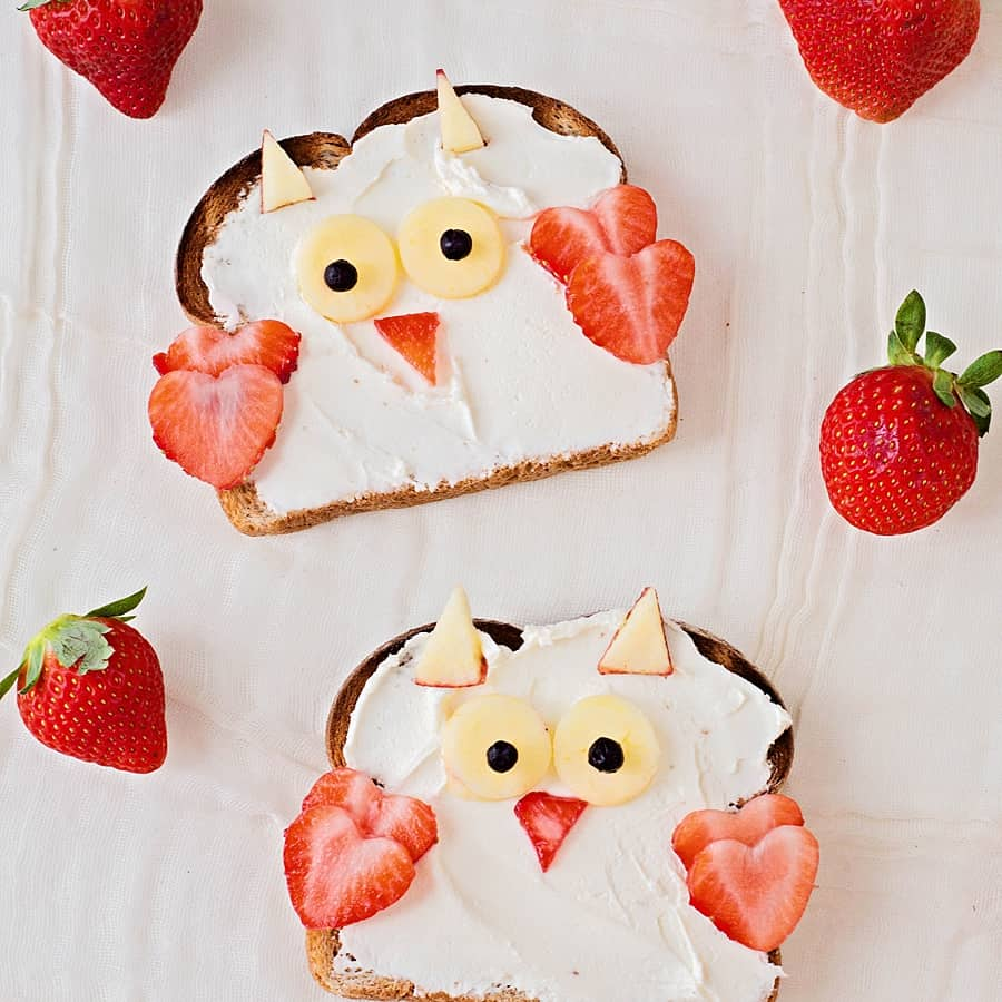 Cute Owl Animal Toast