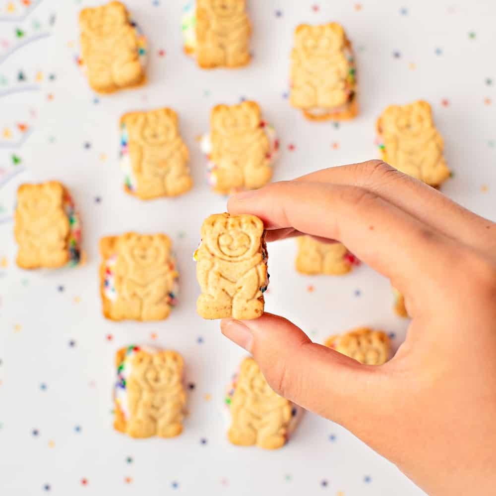 mini teddy bear graham ice cream sandwiches. Showing one upclose.