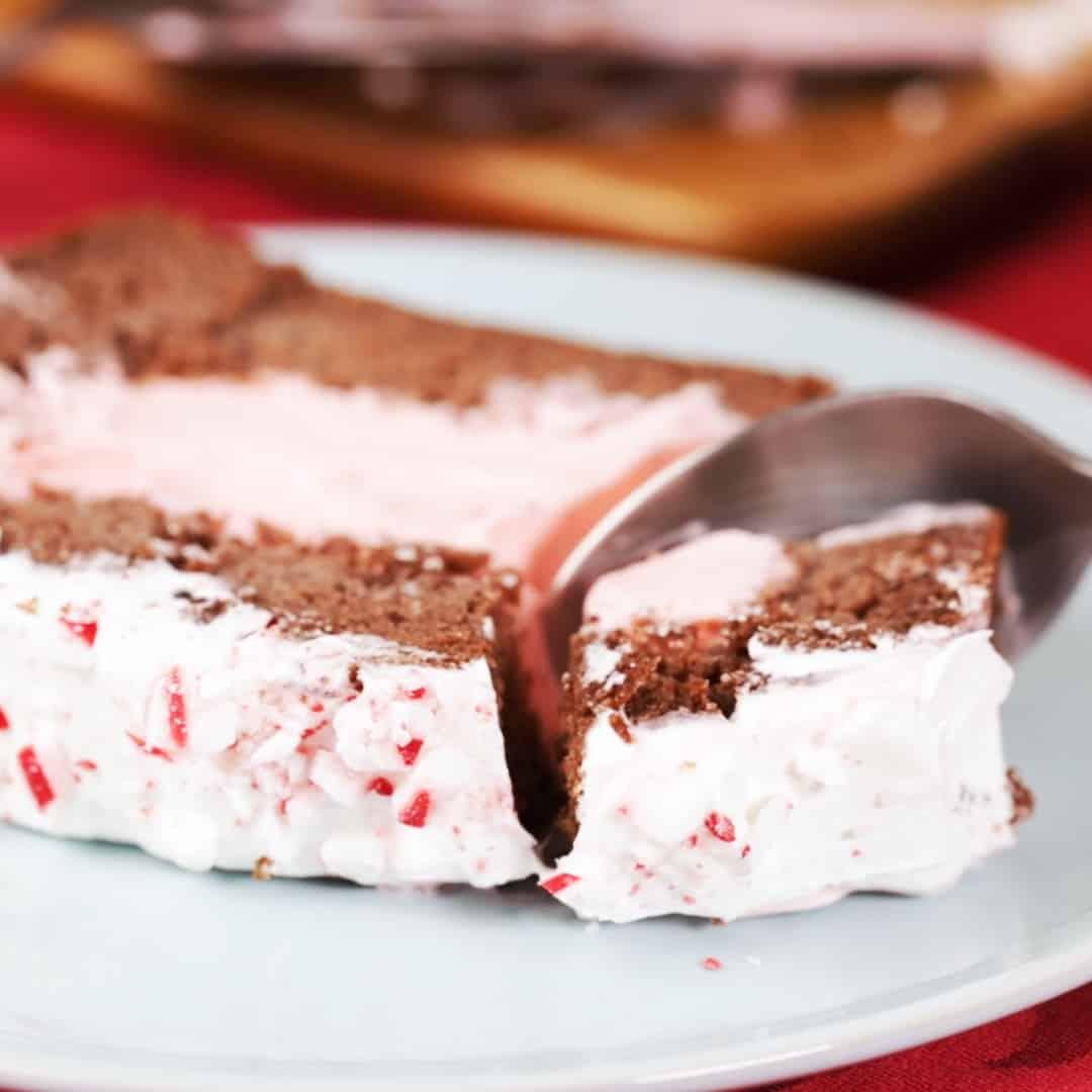 Peppermint Ice Cream Chocolate Cake