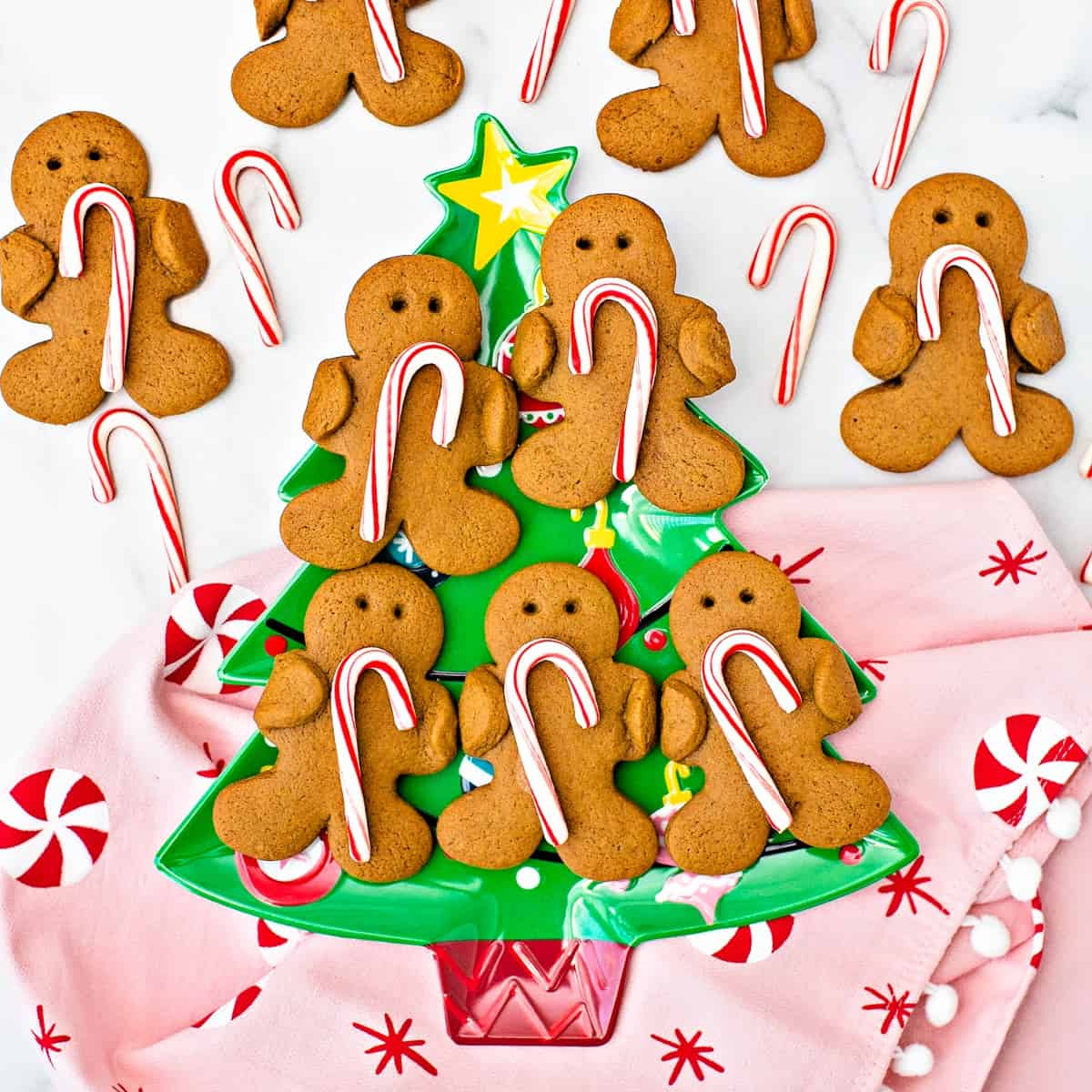 Gingerbread Holding Candy Canes