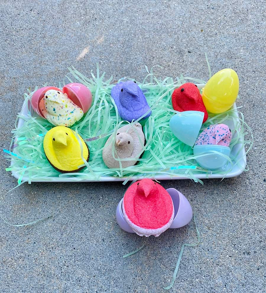 Various flavors of Peeps Easter Candy